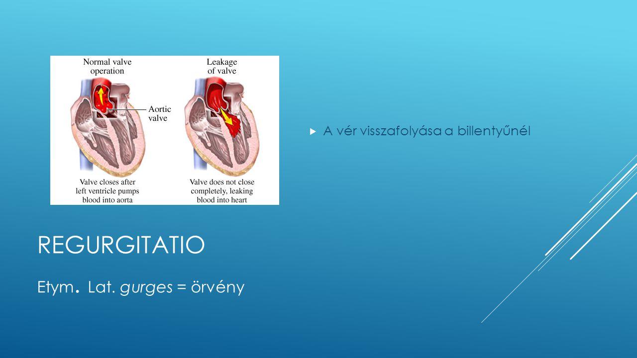 REGURGITATIO  A vér visszafolyása a billentyűnél Etym. Lat. gurges = örvény