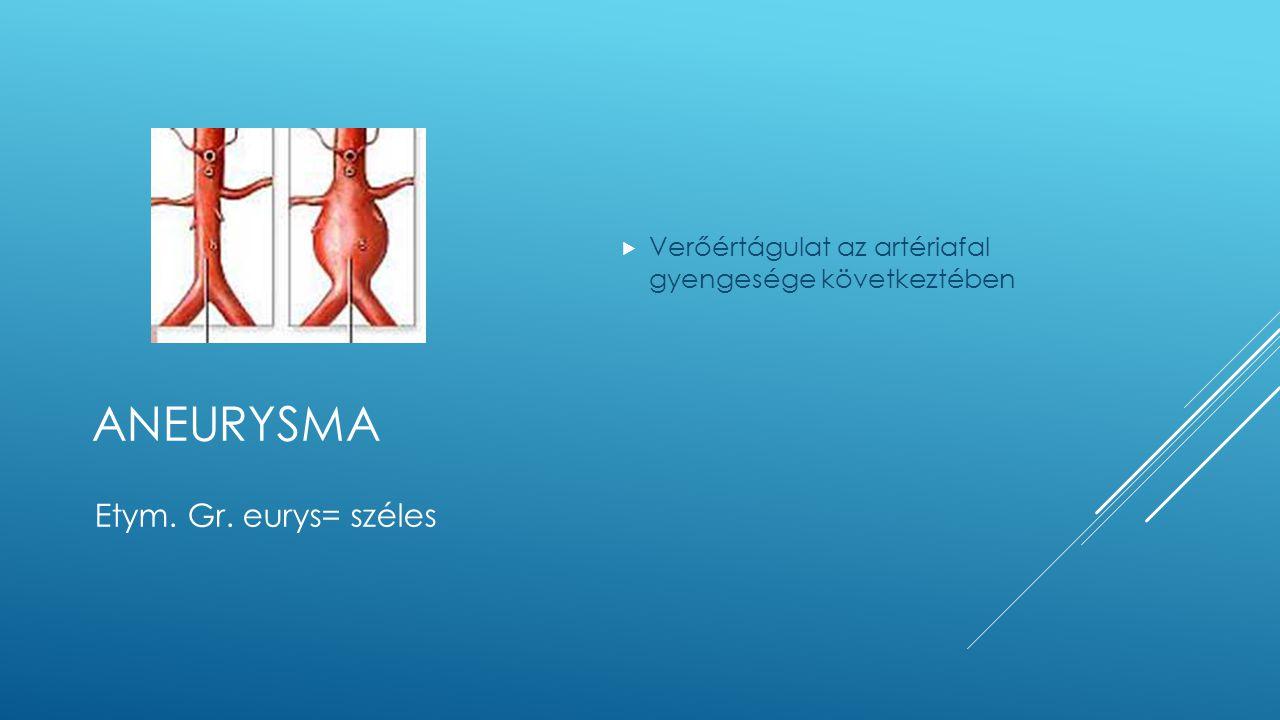 ANEURYSMA  Verőértágulat az artériafal gyengesége következtében Etym. Gr. eurys= széles
