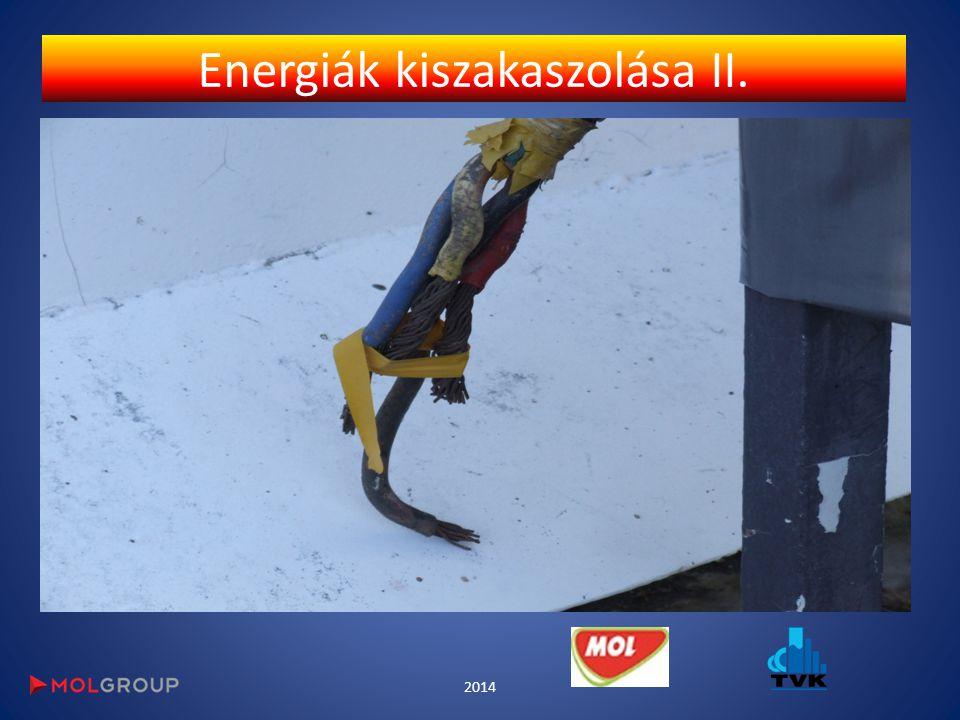 Energiák kiszakaszolása II. 2014