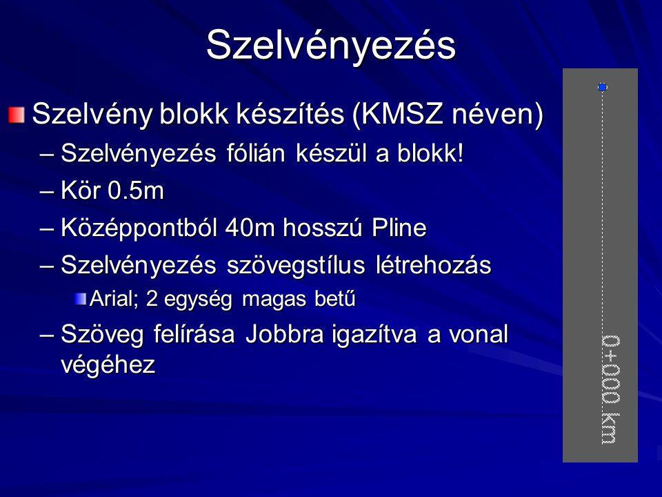 Szelvényezés Szelvény blokk készítés (KMSZ néven) –Szelvényezés fólián készül a blokk.