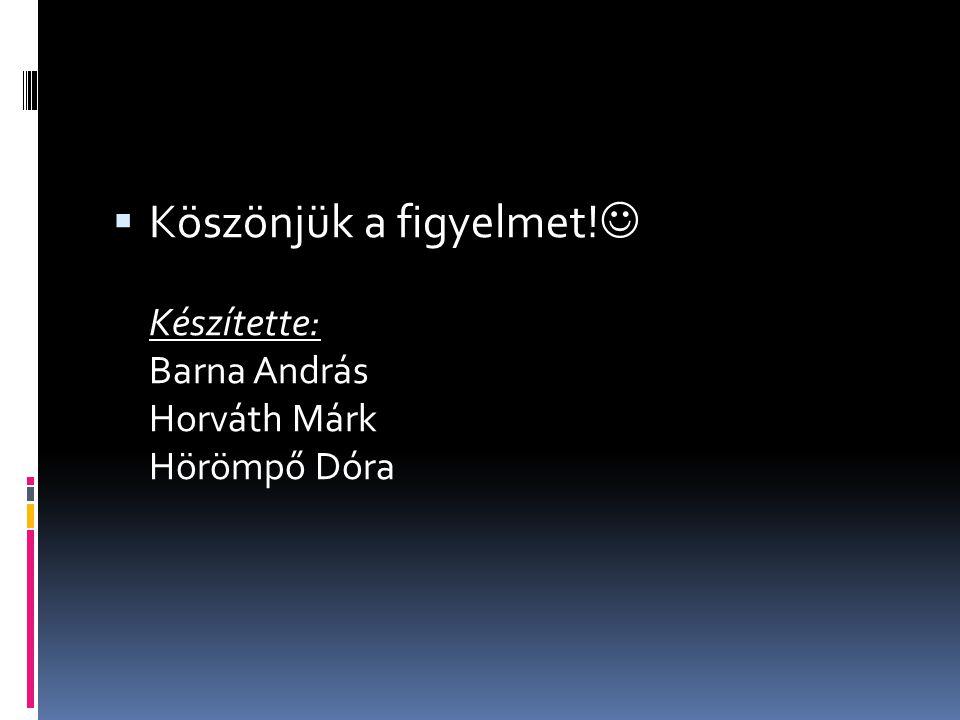  Köszönjük a figyelmet! Készítette: Barna András Horváth Márk Hörömpő Dóra
