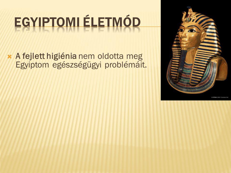  A fejlett higiénia nem oldotta meg Egyiptom egészségügyi problémáit.