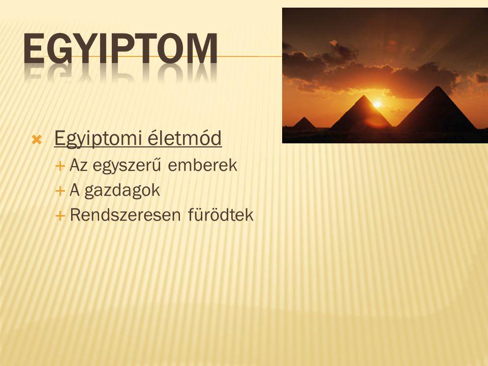  Egyiptomi életmód  Az egyszerű emberek  A gazdagok  Rendszeresen fürödtek