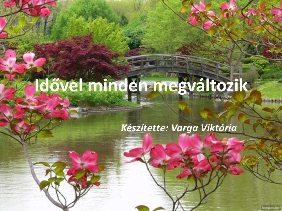 Idővel minden megváltozik Készítette: Varga Viktória