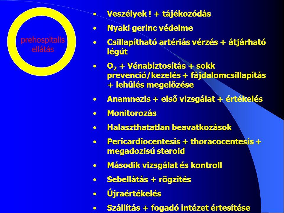 Veszélyek ! + tájékozódás Nyaki gerinc védelme Csillapítható artériás vérzés + átjárható légút O 2 + Vénabiztosítás + sokk prevenció/kezelés + fájdalo