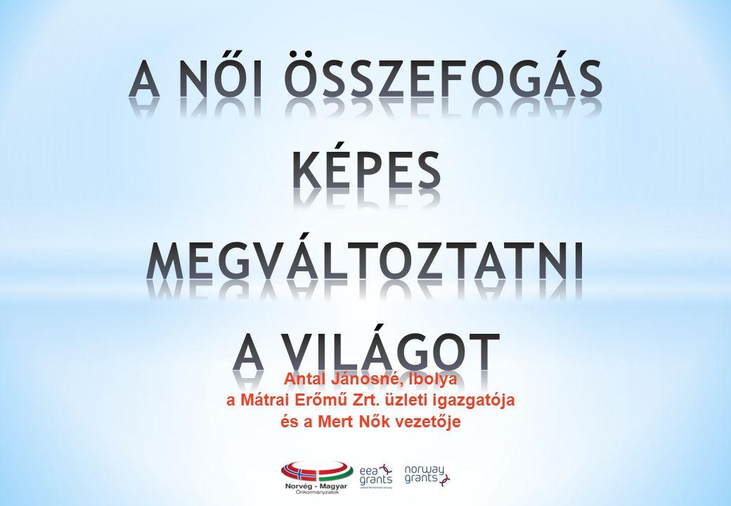 12 Szemétszedő akciók a Mátrában (Mert Nők) Gyűjtött adományok átadása és közös gyümölcsfa ültetés Ózd romák lakta városrészében (Elmű-Émász Női Fórum) Energiatudatossági bemutató (ELMŰ EnergiaPont)