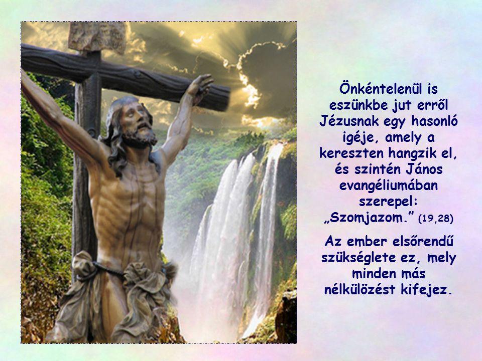 """Aki ellentétes oldalon áll, vagy más kultúra, más vallás vagy társadalom gyermeke, abban is ott rejtőzik Jézus, és kérésével hozzánk fordul: """"Adj inno"""