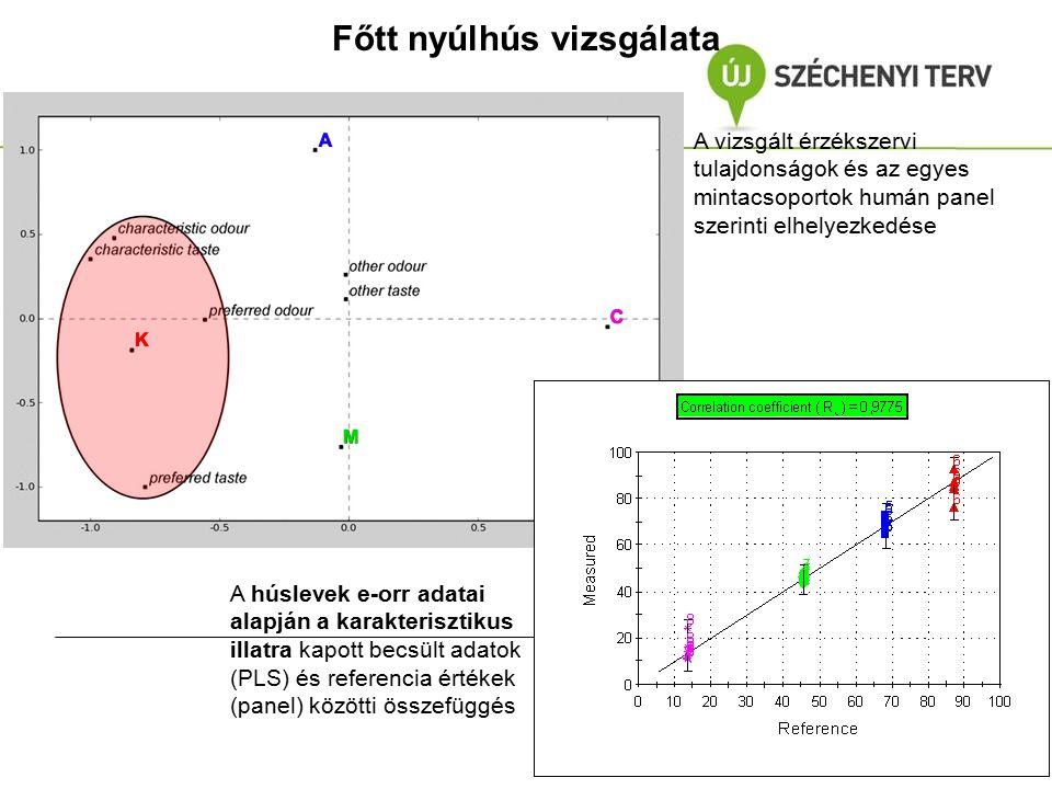 Főtt nyúlhús vizsgálata A vizsgált érzékszervi tulajdonságok és az egyes mintacsoportok humán panel szerinti elhelyezkedése A húslevek e-orr adatai al