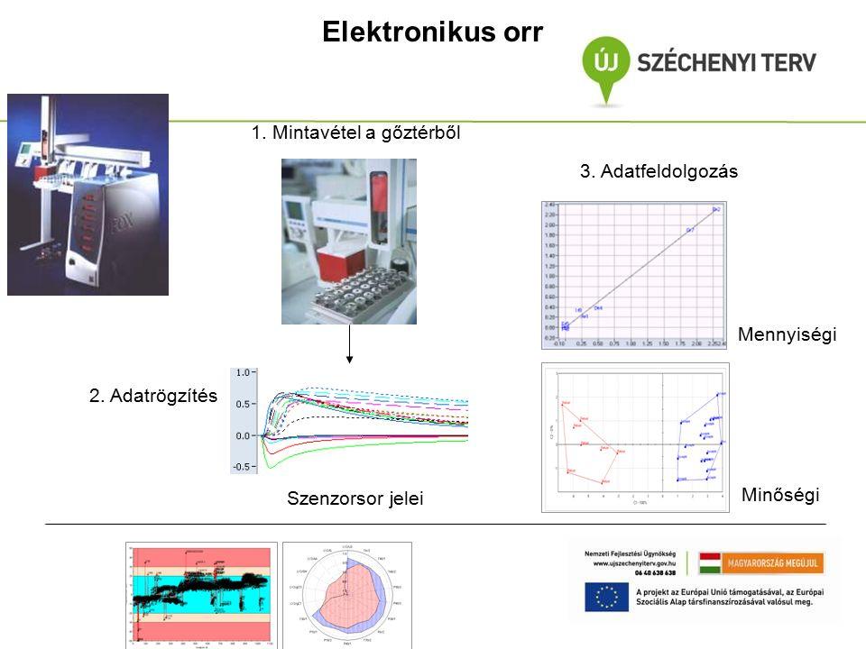 Elektronikus orr 1. Mintavétel a gőztérből Szenzorsor jelei 2. Adatrögzítés 3. Adatfeldolgozás Mennyiségi Minőségi
