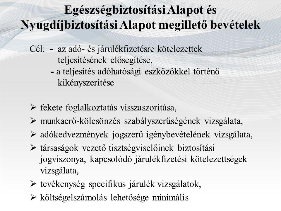 TípusArány (%) - rendészeti ellenőrzés (pl.