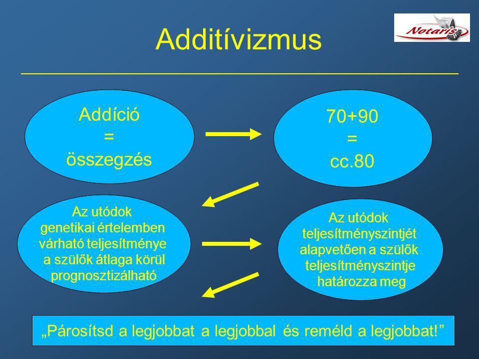 """Additívizmus Addíció = összegzés 70+90 = cc.80 Az utódok genetikai értelemben várható teljesítménye a szülők átlaga körül prognosztizálható """"Párosítsd"""