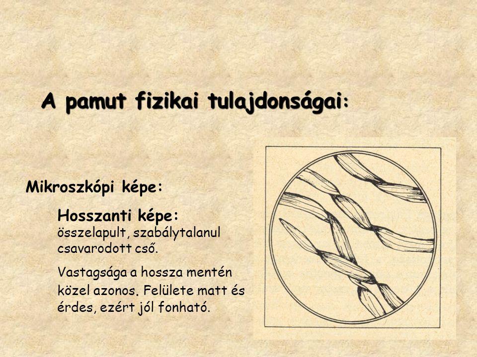 A pamut fizikai tulajdonságai : A pamut fizikai tulajdonságai : Mikroszkópi képe: Hosszanti képe: összelapult, szabálytalanul csavarodott cső.