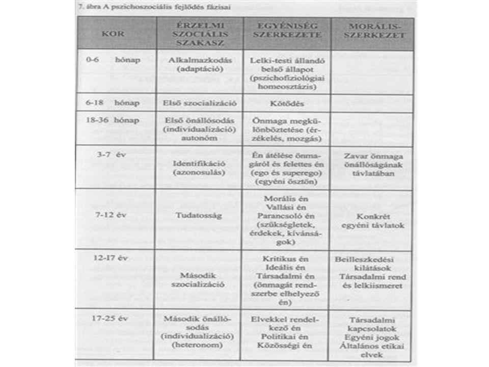 Oktatási koncepció Elmélet és gyakorlat –Célok, módszerek (pl.