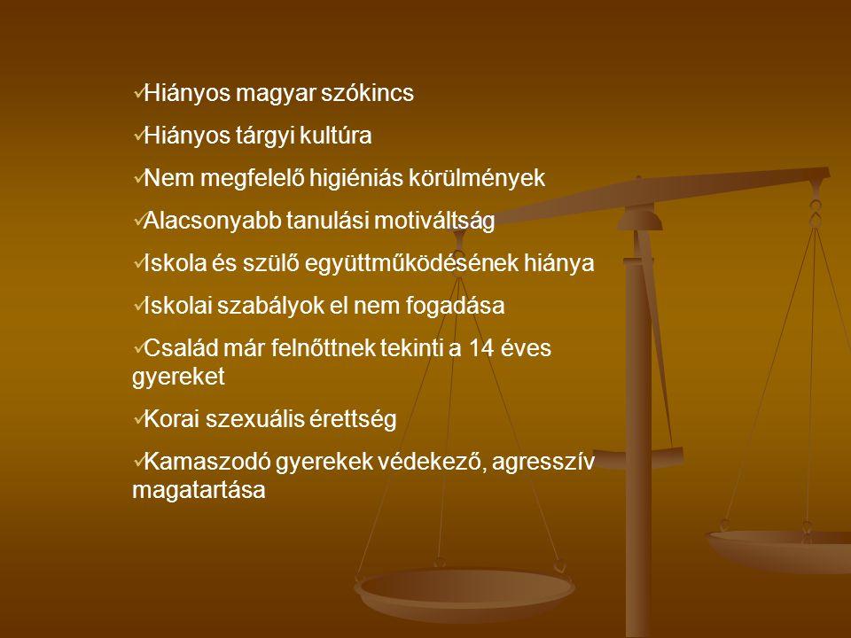 Hiányos magyar szókincs Hiányos tárgyi kultúra Nem megfelelő higiéniás körülmények Alacsonyabb tanulási motiváltság Iskola és szülő együttműködésének