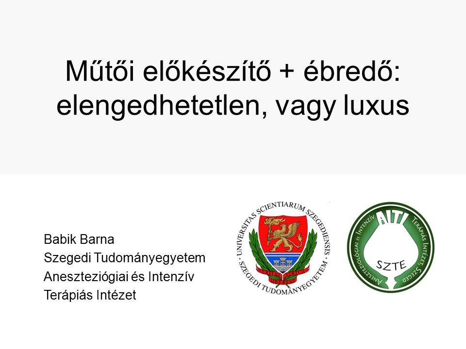 Műtői előkészítő + ébredő: elengedhetetlen, vagy luxus Babik Barna Szegedi Tudományegyetem Aneszteziógiai és Intenzív Terápiás Intézet