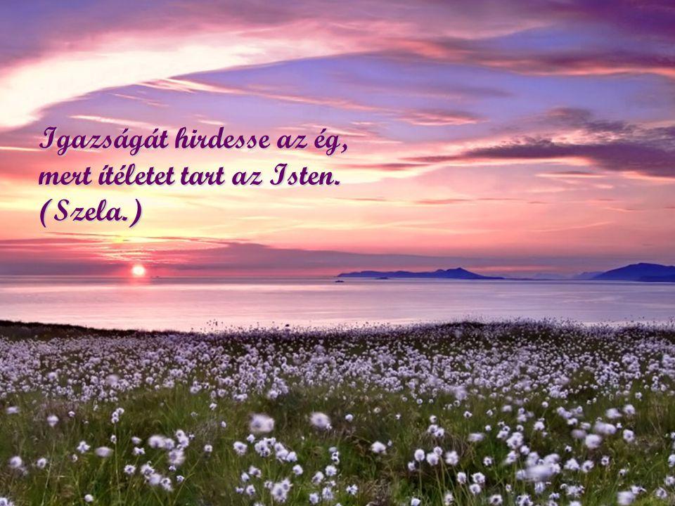 Igazságát hirdesse az ég, mert ítéletet tart az Isten. (Szela.)