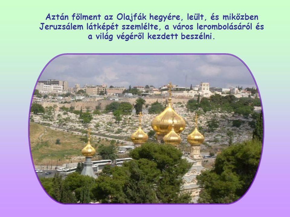 Aztán fölment az Olajfák hegyére, leült, és miközben Jeruzsálem látképét szemlélte, a város lerombolásáról és a világ végéről kezdett beszélni.