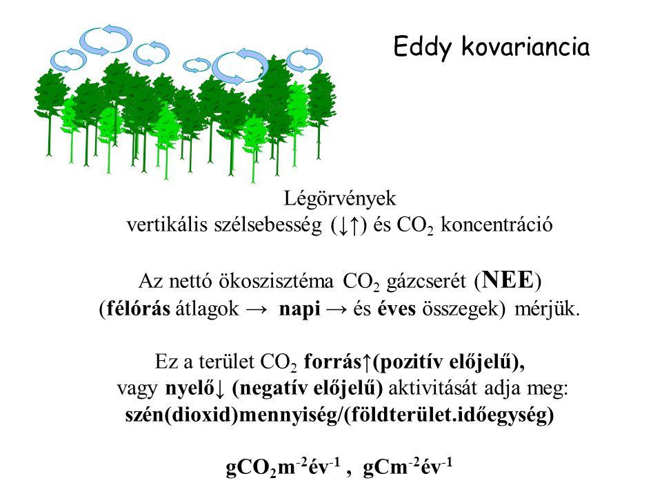 Eddy kovariancia Légörvények vertikális szélsebesség (↓↑) és CO 2 koncentráció Az nettó ökoszisztéma CO 2 gázcserét ( NEE ) (félórás átlagok → napi →
