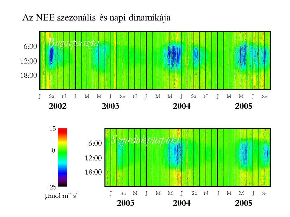 Az NEE szezonális és napi dinamikája