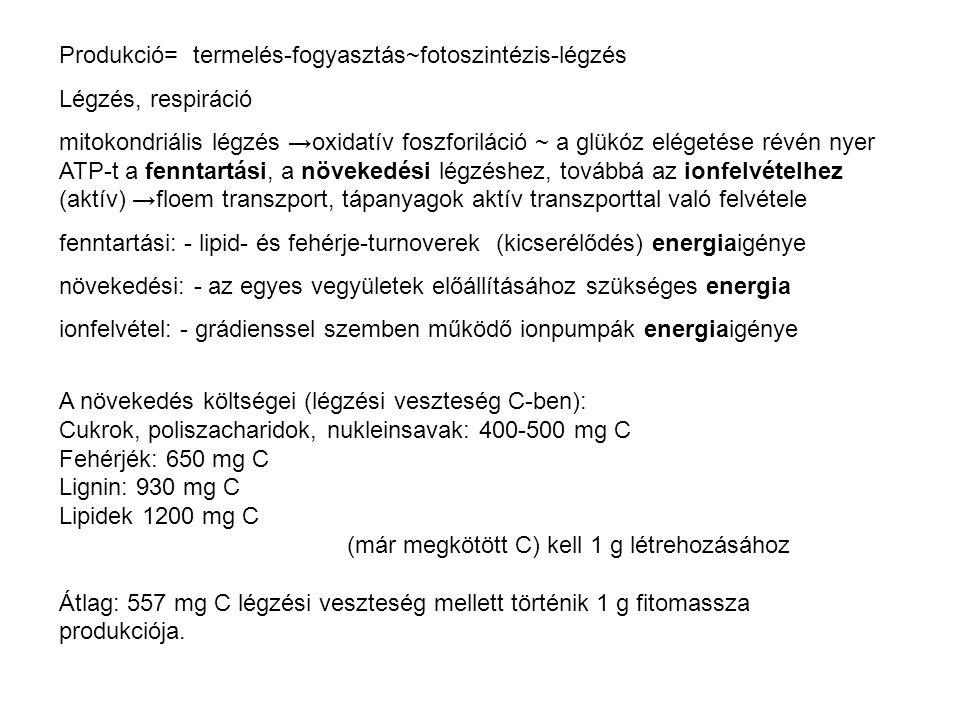 Produkció= termelés-fogyasztás~fotoszintézis-légzés Légzés, respiráció mitokondriális légzés →oxidatív foszforiláció ~ a glükóz elégetése révén nyer A