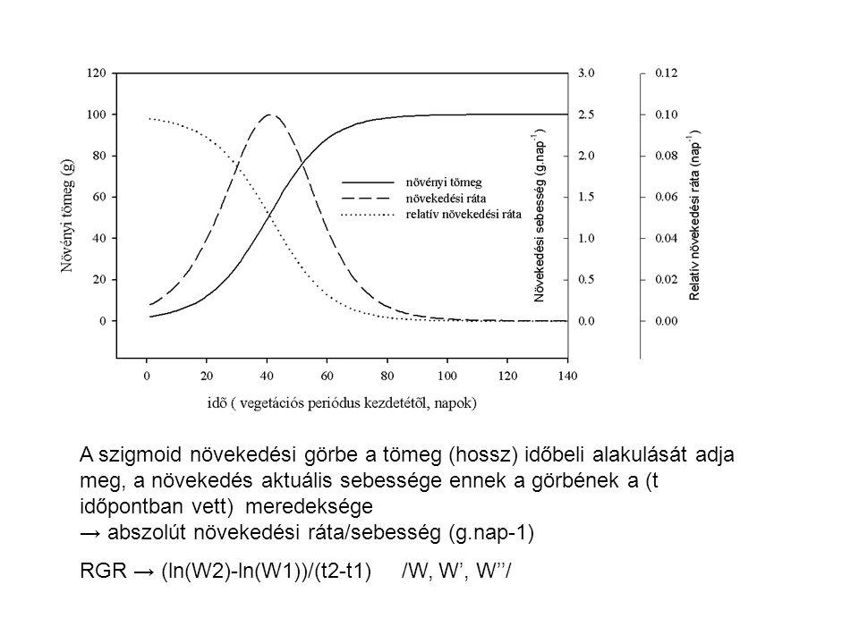 A szigmoid növekedési görbe a tömeg (hossz) időbeli alakulását adja meg, a növekedés aktuális sebessége ennek a görbének a (t időpontban vett) meredek