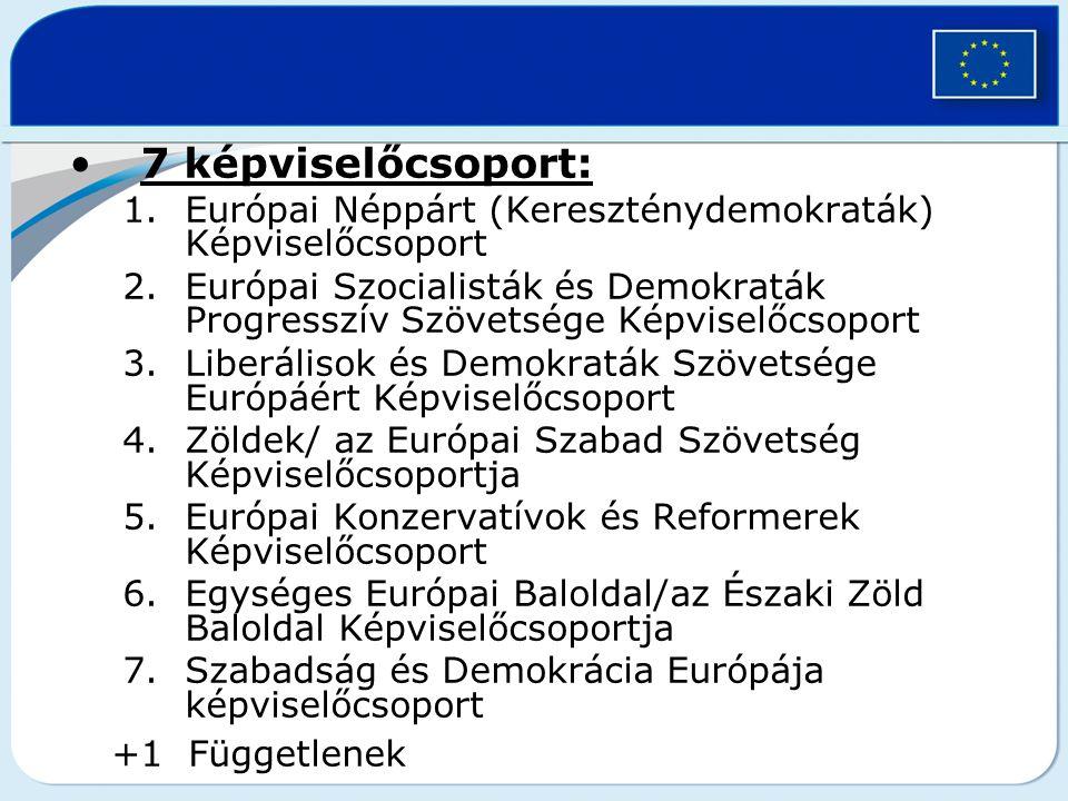 7 képviselőcsoport: 1.Európai Néppárt (Kereszténydemokraták) Képviselőcsoport 2.Európai Szocialisták és Demokraták Progresszív Szövetsége Képviselőcso