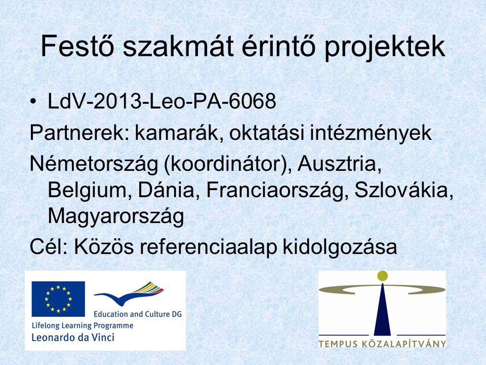 Festő szakmát érintő projektek LdV-2013-Leo-PA-6068 Partnerek: kamarák, oktatási intézmények Németország (koordinátor), Ausztria, Belgium, Dánia, Franciaország, Szlovákia, Magyarország Cél: Közös referenciaalap kidolgozása