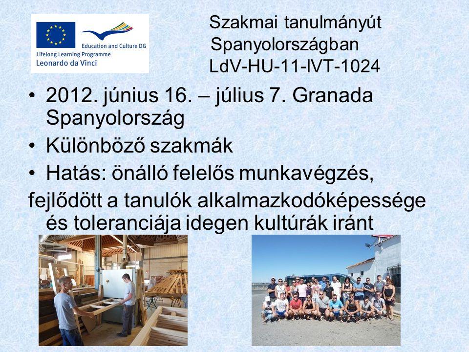Szakmai tanulmányút Spanyolországban LdV-HU-11-IVT-1024 2012.