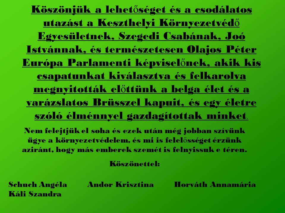 Köszönjük a lehet ő séget és a csodálatos utazást a Keszthelyi Környezetvéd ő Egyesületnek, Szegedi Csabának, Joó Istvánnak, és természetesen Olajos Péter Európa Parlamenti képvisel ő nek, akik kis csapatunkat kiválasztva és felkarolva megnyitották el ő ttünk a belga élet és a varázslatos Brüsszel kapuit, és egy életre szóló élménnyel gazdagítottak minket.