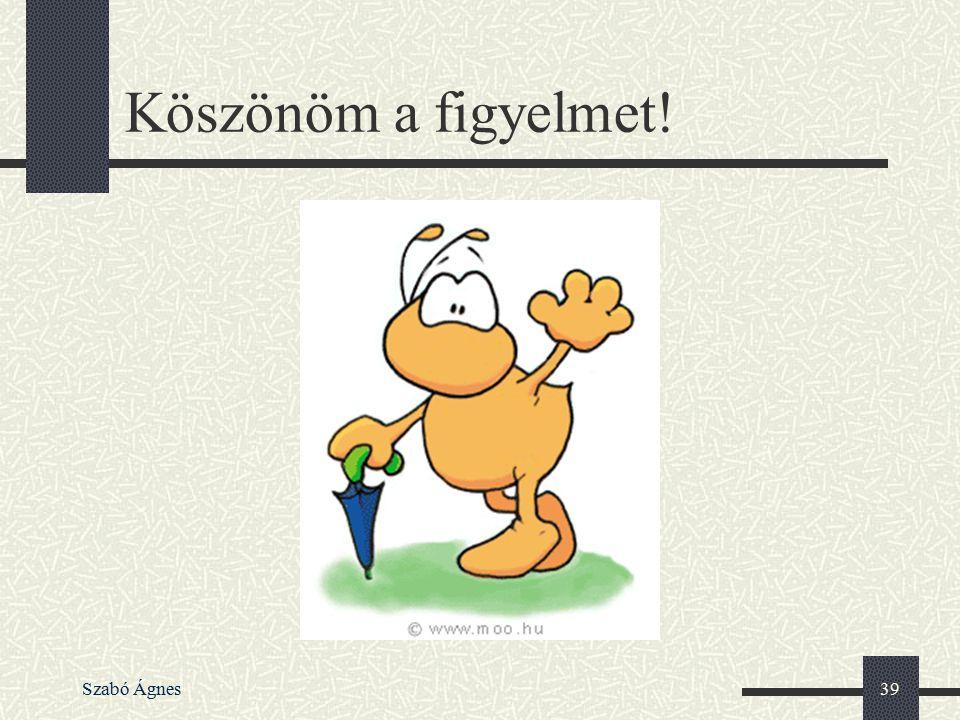 Szabó Ágnes39 Köszönöm a figyelmet!