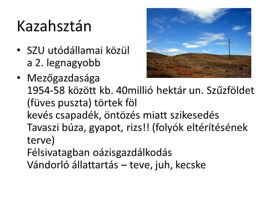 Kazahsztán SZU utódállamai közül a 2. legnagyobb Mezőgazdasága 1954-58 között kb. 40millió hektár un. Szűzföldet (füves puszta) törtek föl kevés csapa