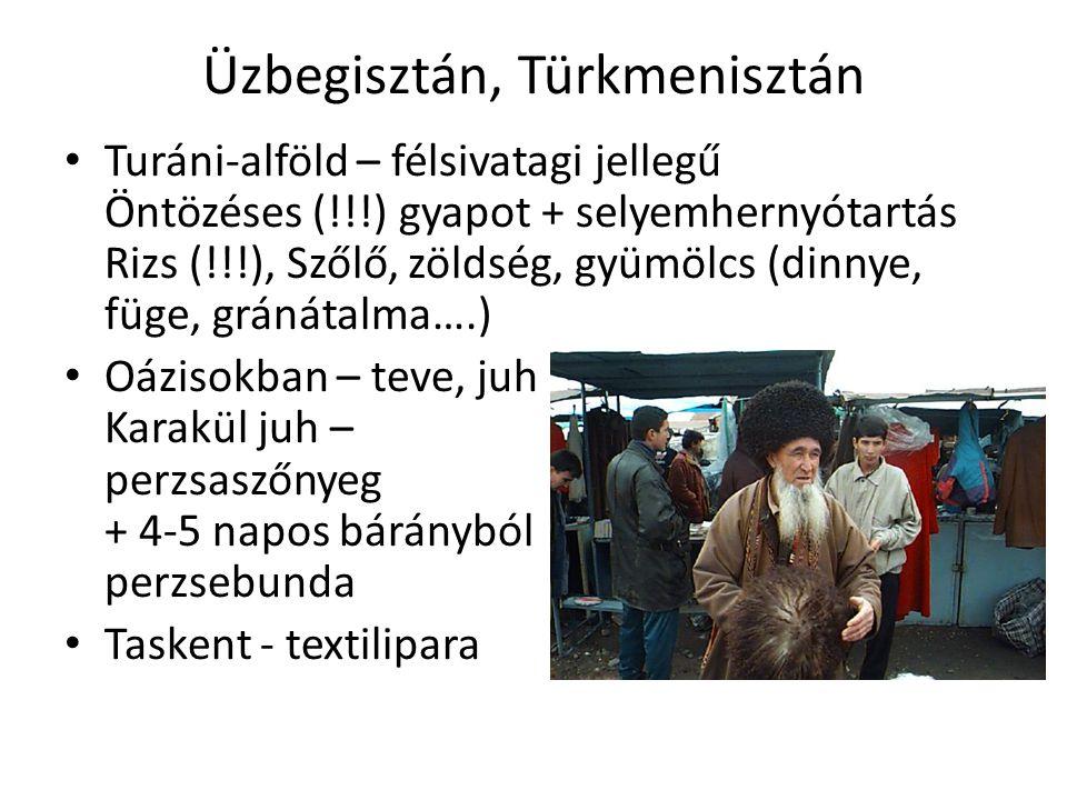 Üzbegisztán, Türkmenisztán Turáni-alföld – félsivatagi jellegű Öntözéses (!!!) gyapot + selyemhernyótartás Rizs (!!!), Szőlő, zöldség, gyümölcs (dinnye, füge, gránátalma….) Oázisokban – teve, juh Karakül juh – perzsaszőnyeg + 4-5 napos bárányból perzsebunda Taskent - textilipara