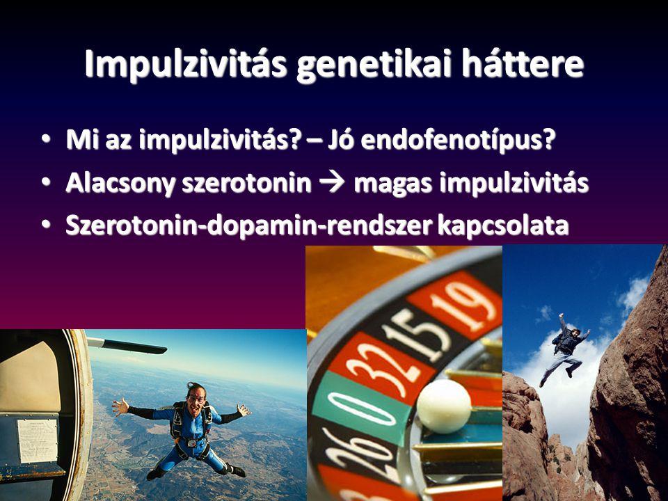 Impulzivitás genetikai háttere Mi az impulzivitás? – Jó endofenotípus? Mi az impulzivitás? – Jó endofenotípus? Alacsony szerotonin  magas impulzivitá