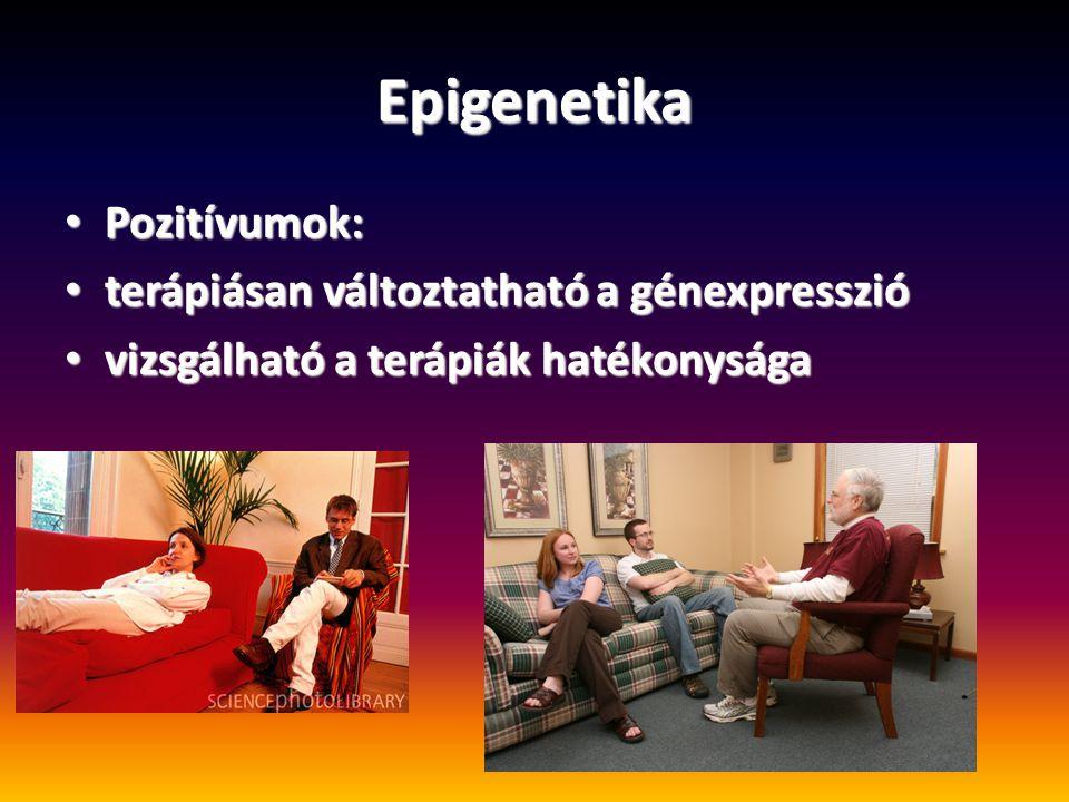 Epigenetika Pozitívumok: Pozitívumok: terápiásan változtatható a génexpresszió terápiásan változtatható a génexpresszió vizsgálható a terápiák hatékon