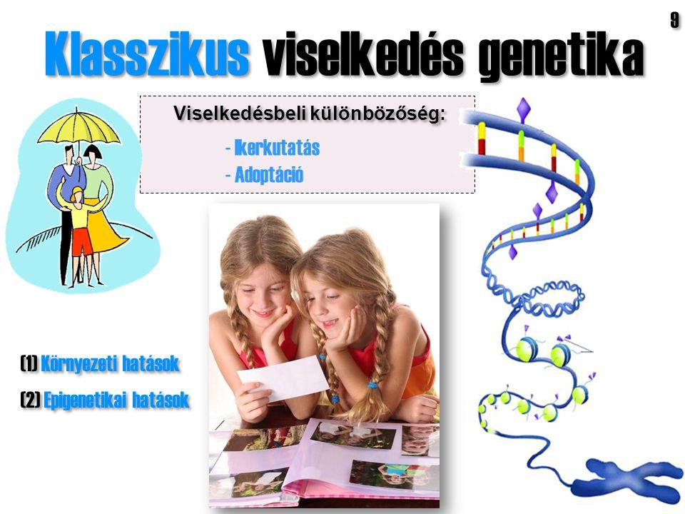 Klasszikus viselkedés genetika Viselkedésbeli különbözőség: (1) Környezeti hatások (2) Epigenetikai hatások (1) Környezeti hatások (2) Epigenetikai ha
