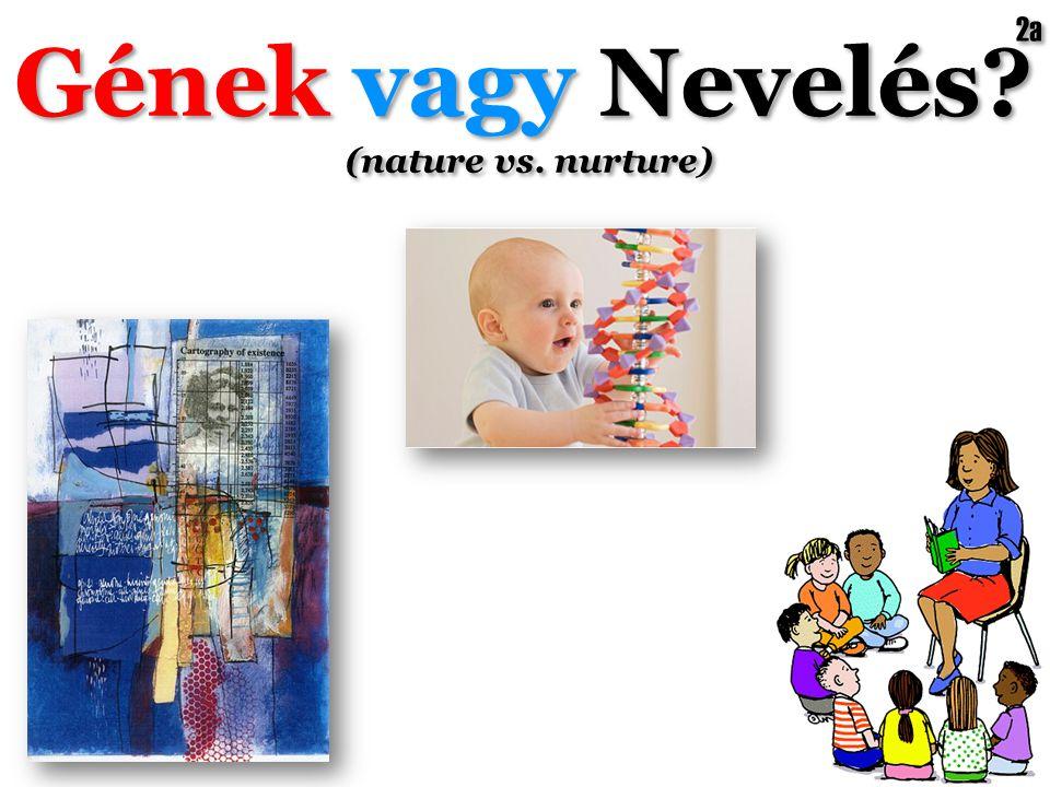 Gének vagy Nevelés? (nature vs. nurture) Gének vagy Nevelés? (nature vs. nurture) 2a