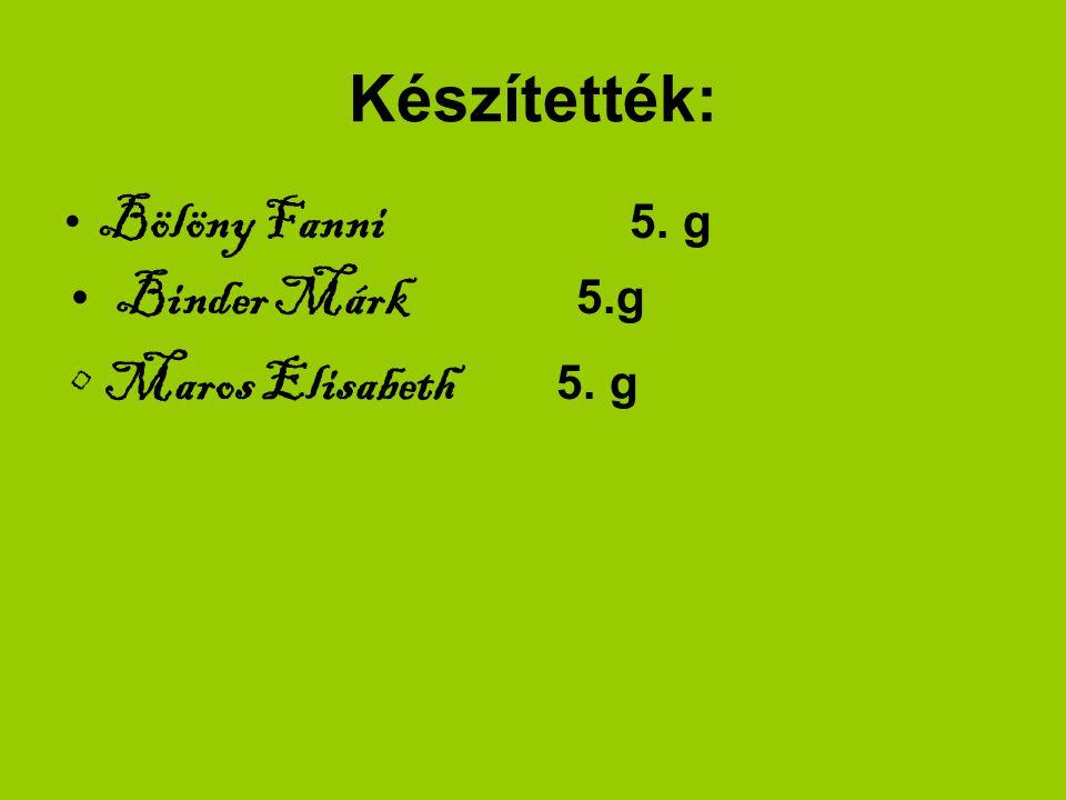 Készítették: 5. g Binder Márk 5.g Maros Elisabeth 5. g Bölöny Fanni