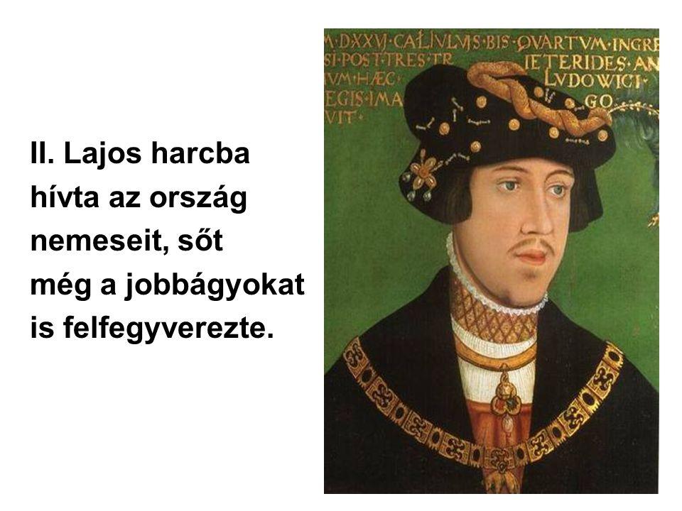 II. Lajos harcba hívta az ország nemeseit, sőt még a jobbágyokat is felfegyverezte.