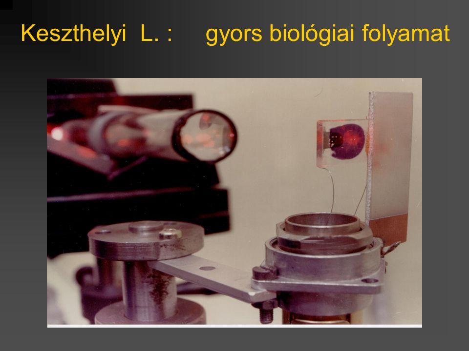 Keszthelyi L. : gyors biológiai folyamat