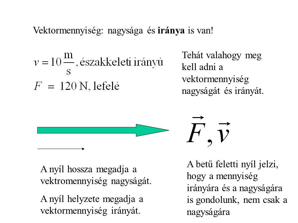 Vektormennyiség: nagysága és iránya is van! Tehát valahogy meg kell adni a vektormennyiség nagyságát és irányát. A nyíl hossza megadja a vektromennyis