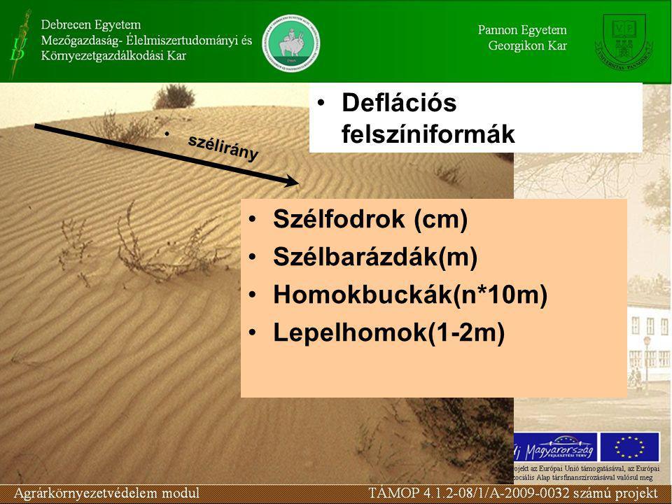 Szélfodrok (cm) Szélbarázdák(m) Homokbuckák(n*10m) Lepelhomok(1-2m) Deflációs felszíniformák szélirány