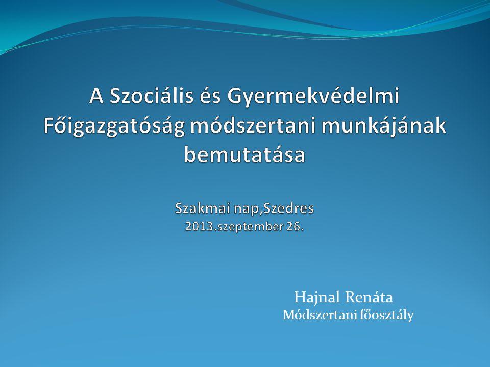 Módszertani feladatellátás A korábban kijelölt módszertani intézmények kijelölése 2012.
