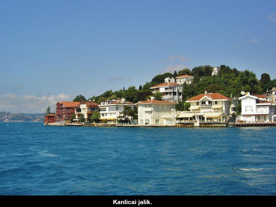 A középső Ethem pasa híres Pertev Jalija. Az ázsiai parton elhaladunk a joghurtjáról nevezetes Kanlica falu előtt. Az egész környék jalikkal, nyári lu