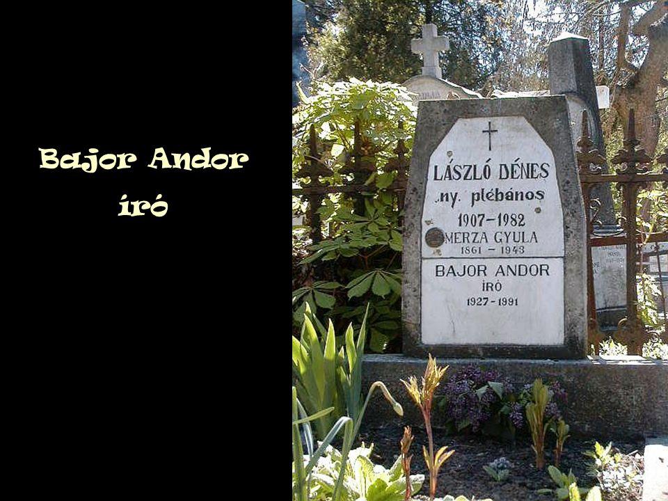 Bajor Andor író