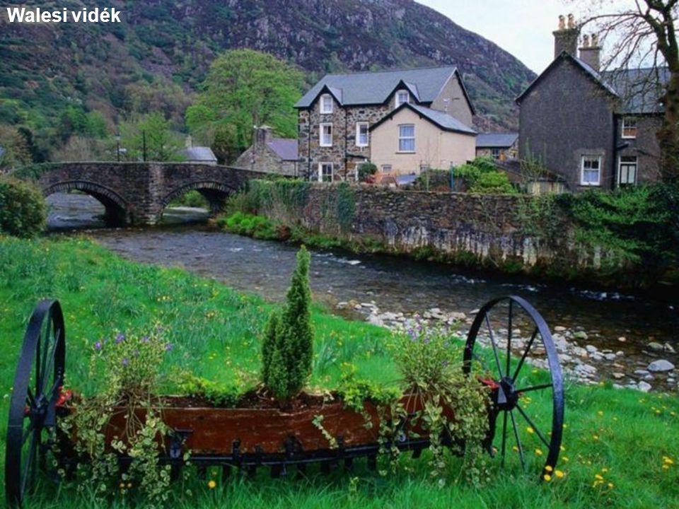 Wales-i villamos