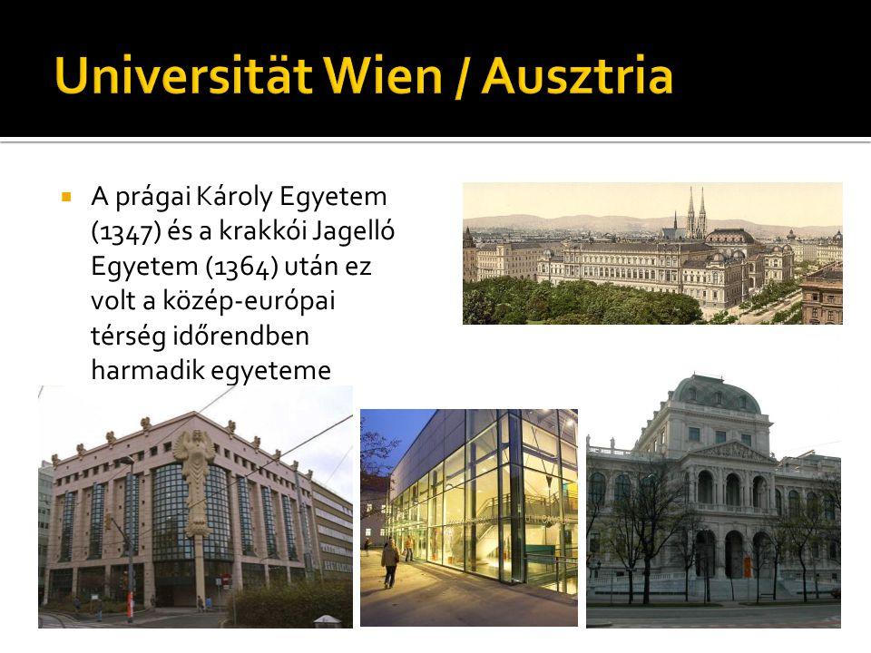  A prágai Károly Egyetem (1347) és a krakkói Jagelló Egyetem (1364) után ez volt a közép-európai térség időrendben harmadik egyeteme