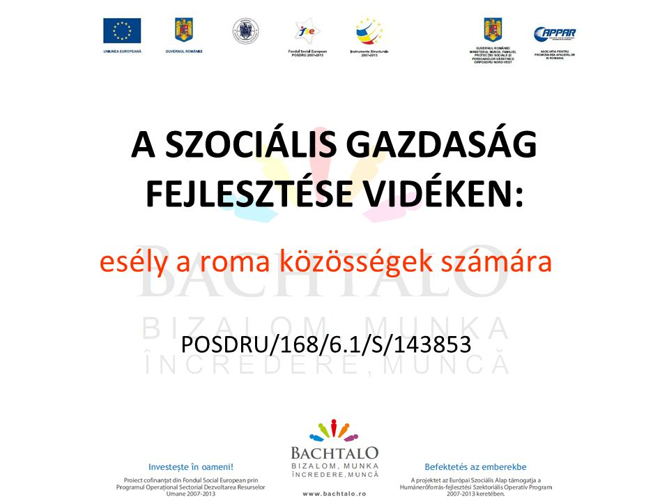 A SZOCIÁLIS GAZDASÁG FEJLESZTÉSE VIDÉKEN: esély a roma közösségek számára POSDRU/168/6.1/S/143853
