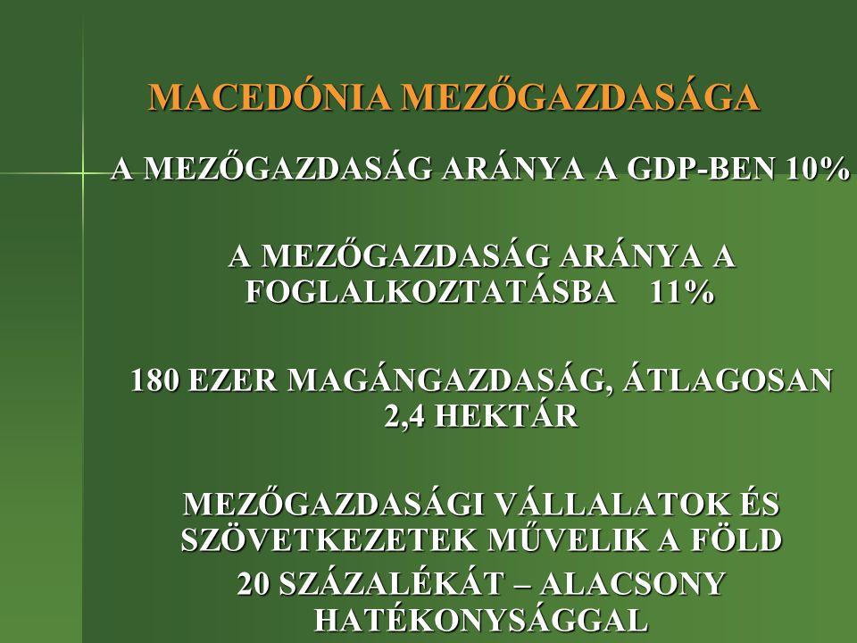 MACEDÓNIA – GAZDASÁGI ÉS DEMOGRÁFIAI ADATOK NÉPESSÉG (2004)2 MILLIÓ 66 EZER FŐ TERÜLET 23 EZER KM2 EGY FŐRE JUTÓ GDP (2002) 2 429 USD 2005 NOVEMBERÉBEN MACEDÓNIA EU TAGJELÖLT LETT, DE A TÁRGYALÁSOK MÉG NEM KEZDŐDNEK EL 2005 NOVEMBERÉBEN MACEDÓNIA EU TAGJELÖLT LETT, DE A TÁRGYALÁSOK MÉG NEM KEZDŐDNEK EL AZ ELMÚLT 10 ÉVBEN SZÁMOTTEVŐ SEGÉLYEK A FEJLETT ORSZÁGOKTÓL – KOORDINÁCIÓ.