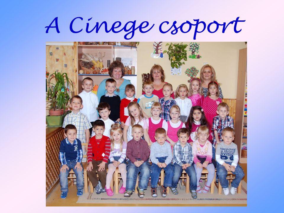 A Cinege csoport