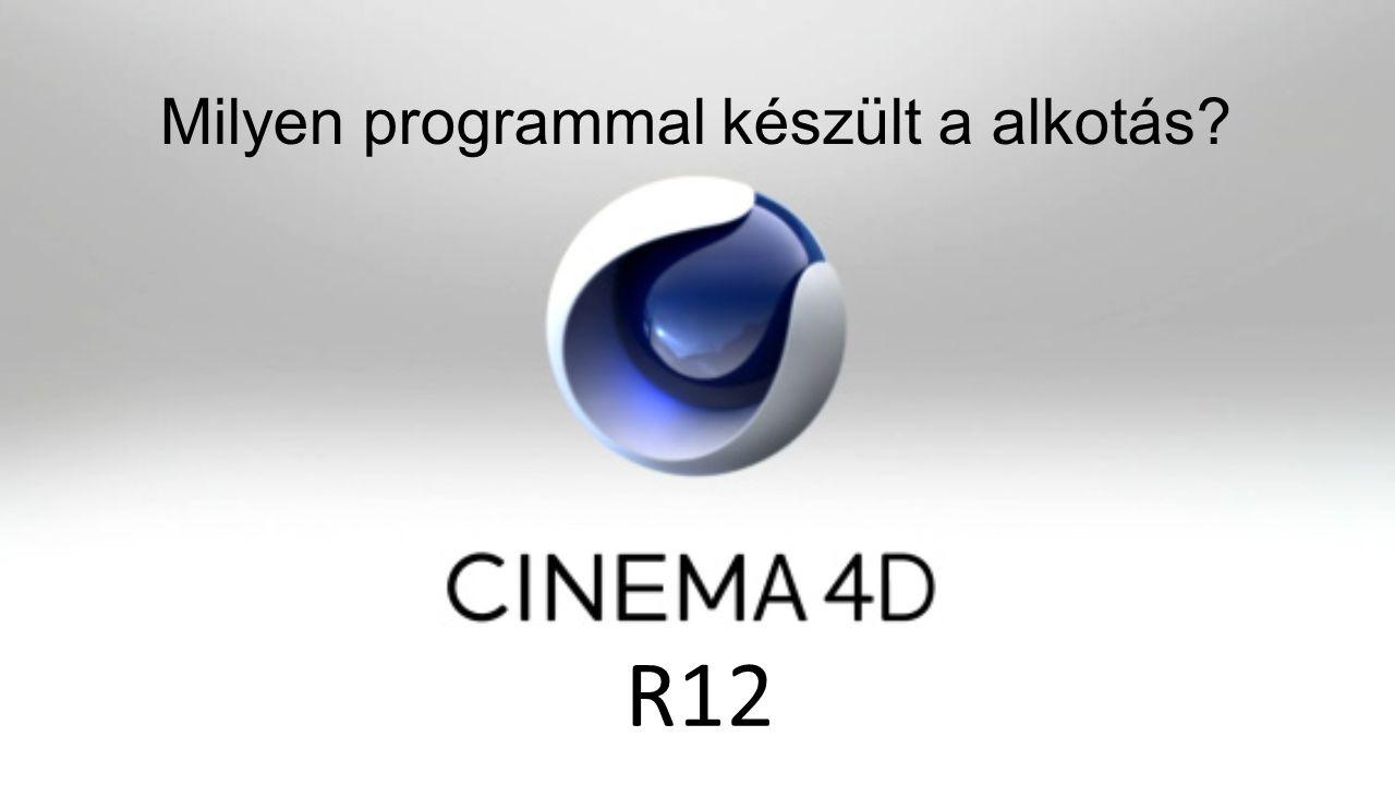 Milyen programmal készült a alkotás? R12